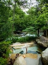 森の湯72101