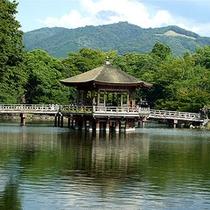 ■夏の浮見堂と高円山