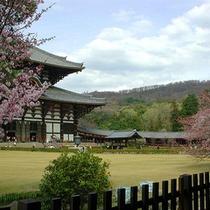 ■東大寺のお庭