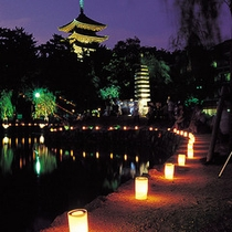 ■なら燈花会「猿沢池」