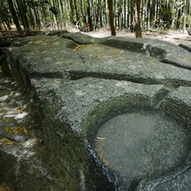 ■明日村遺跡の酒船石