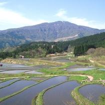 付近には氷ノ山と眼下に広がる棚田の景色を、望めるスポットがあります。