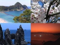★春本番 絶景 たけの海岸!!
