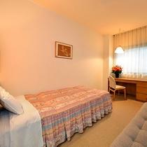 ◇トイレ付シングルルーム+ソファーベッド(17平米)