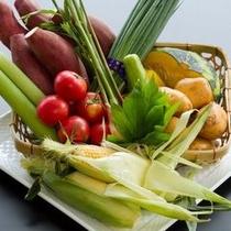 ◯新鮮野菜