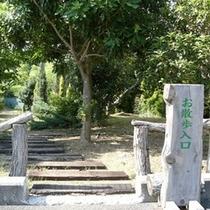 当館のお庭は散歩コースになっています。