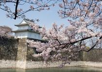 大阪城(天守閣)♪美しき大阪城!四季折々の風景なかでも西の丸庭園は梅林や桜が美しい。