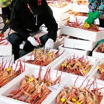 蟹(市場)