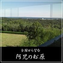 館内から阿児の松原を望む