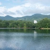 【水と緑のコントラスト「鴫の谷地沼」】ホテルから徒歩5分。散策は1周約30分。