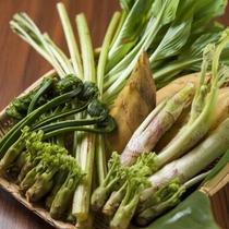 【春の特別会席】春の朗らかな香りが広がる蔵王の山菜
