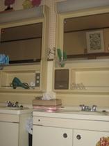 歯ブラシ・ドライヤー・化粧水・綿棒など置いている洗面所