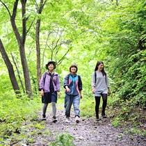 緑に囲まれ森林浴。山ガール気分で散策も楽しめます。