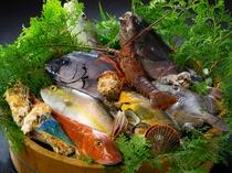 旬の魚を提供しています