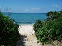 癒しの里 備瀬-プライベートビーチ