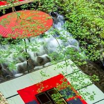 ◆ふじやの川床◆