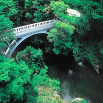山中温泉観光名所【黒谷橋】     当館からの眺望