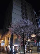 桜の彩るホテル外観です