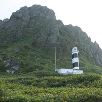 *【周辺/神威岬】雄大なオホーツク海を望める絶景のポイントです。