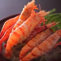 【料理一例】地海老の湯引き。市場にはめったに出回らない海老です