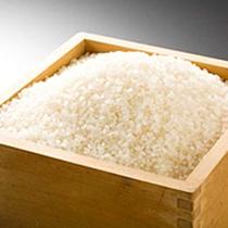 【料理一例 こだわりのお米】西日本で唯一特Aの格付けを持つ、丹後コシヒカリをお伴に