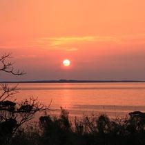 「居酒屋民宿珊瑚礁」から見る夕陽