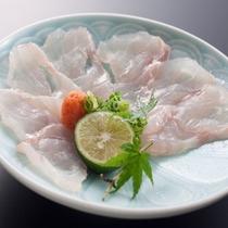 幻の魚『紀州本クエ』~嗜好の一品-クエの薄造り-~