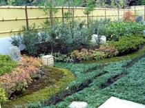 一面に広がる庭園
