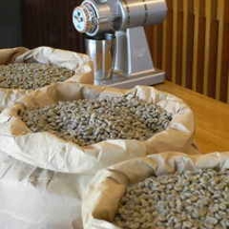 自家焙煎のコーヒー