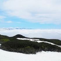 春の幻想的な雲海風景