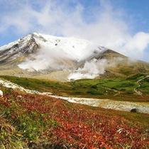 冠雪の旭岳