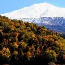 10月中旬頃まで美しい積雪と紅葉のコントラストを楽しめる