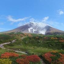 8月下旬になると気温が急激に下がり、山肌が黄色や赤色に色付きはじめ、日本で一番早い紅葉が始まります。