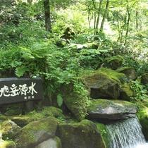 【大雪山の美味しいお水】地元東川町は全国でも珍しい!100%地下水で生活しています!