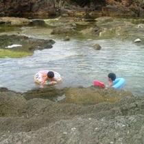 近年人気の間人海水プール