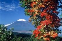 富士山・秋
