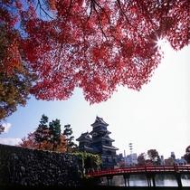 ◆紅葉の松本城