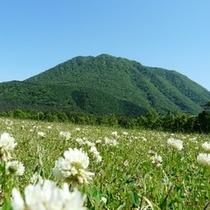 春の三瓶山「北の原」