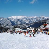 【宝台樹スキー場】ゲレンデ