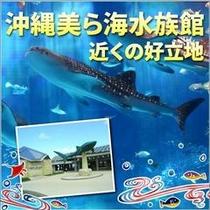 美ら海水族館近く