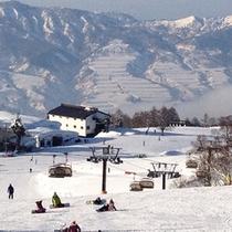野沢温泉スキー場 上の平ゲレンデ
