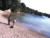 プライベートビーチで愛犬とのお散歩も楽しめます!