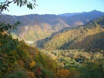秋の平湯峠