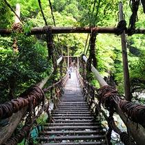 名勝・かずら橋にいちばん近い宿