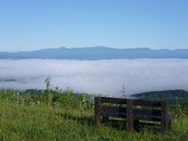 空の地平野部 雲海