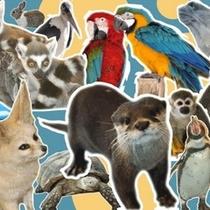 ファームランド ふれあい動物園