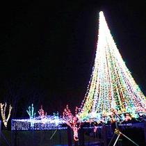 十和田湖温泉スキー場第一駐車場下公園エリア奥入瀬イルミネーション