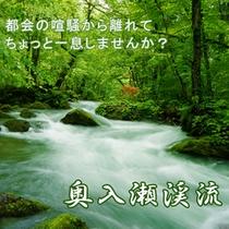 清らかな流れをたたえる奥入瀬渓流