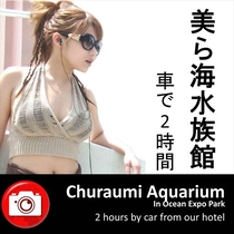【Okinawa Churaumi Aquarium】