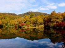 小谷村鎌池の紅葉